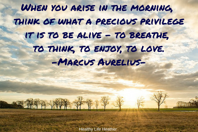 When you arise in the morning, think of what a precious privilege it is to be alive – to breathe, to think, to enjoy, to love.